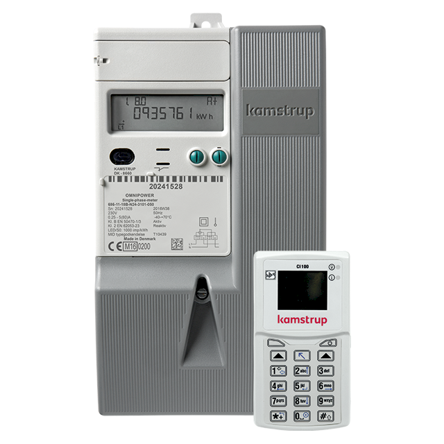 Smart electricity meters and devices for the intelligent grid